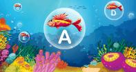 Underwater Typing - Typing Games - Kindergarten